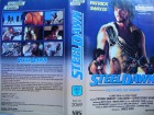 Steel Dawn ... Patrick Swayze, Lisa Niemi, Christopher Neame